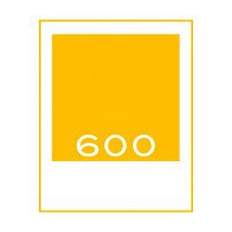 Films voor de Polaroid 600